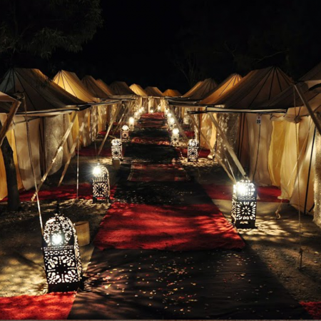 Tented night in Marrakech palm grove under the stars