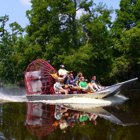 Explore the beautiful wetlands and wildlife that surround New Orleans.