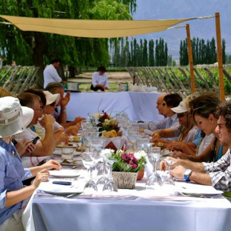 Lunch at the vineyards in Mendoza