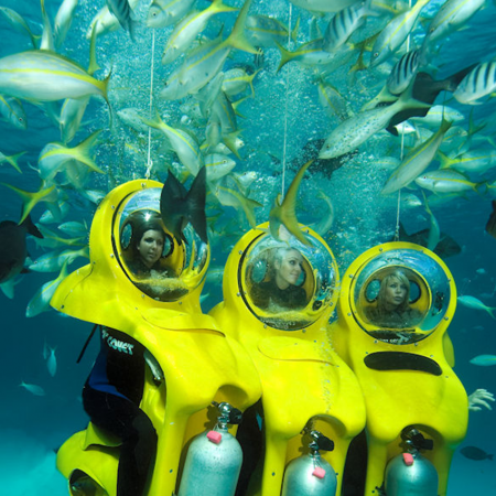 """Climb aboard your personal submarine while you sit on a """"bike"""" and are taken to a beautiful shallow reef."""