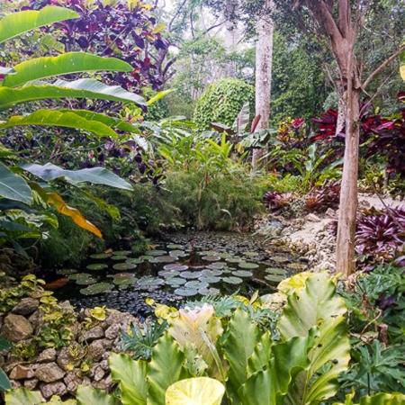 Queen Elizabeth II Park is home to majestic landscapes & endangered blue iguanas.