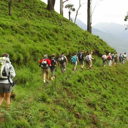 Take a demanding trek high in the mountain rainforest of the Knuckles Range, and see the valuable spice – cardamom - growing in the forest, catch sight of rare orchids and birds, and enjoy the exhilaration of exploring spots where few have been before.  Traverse virtually unexplored country in the southeast, past the renowned Yala National Park where leopards prowl and elephants roam, past the bird-rich Kumana wetlands and into a region where literally hundreds of ruined temples and cities lie