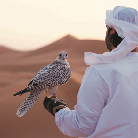 Experience the beauty within the Arabian desert; camel riding, desert camps, falconry, dune bashing and great opportunities for team building.