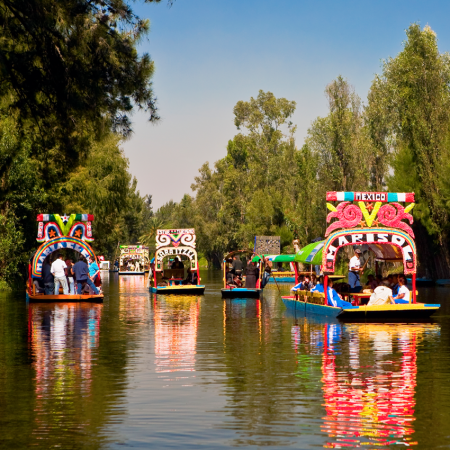 """Xochimilco, besides being famous for its canals and trajinera boats, has one of the most traditional nurseries in the city. The name of this area in Mexico City is a """"Place for the sowing of flowers"""" or """"Field of flowers"""""""