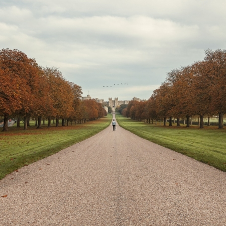 Visit one of our amazing Royal Palaces such as Windsor Castle or Buckingham Palace