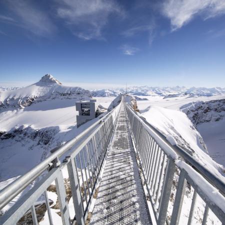 Nature pure: unique Mountain & Glacier Experience