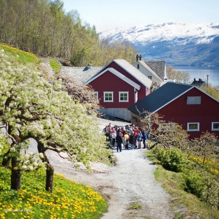 Stop by a local farm and enjoy home-made product tasting with a spectacular fjord view