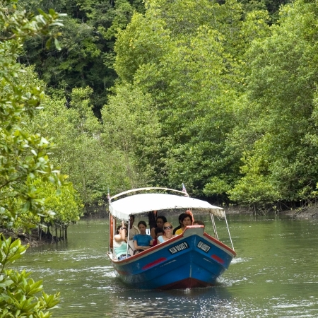 Navigate the twists and turns of Langkawi's Kilim River, venturing through the maze created by rambling mangrove trees on board a fiberglass boat.
