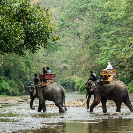 Elephant trekking opportunities can be coupled with long tail boat rides along the Mar Kok River to visit local hill tribes.