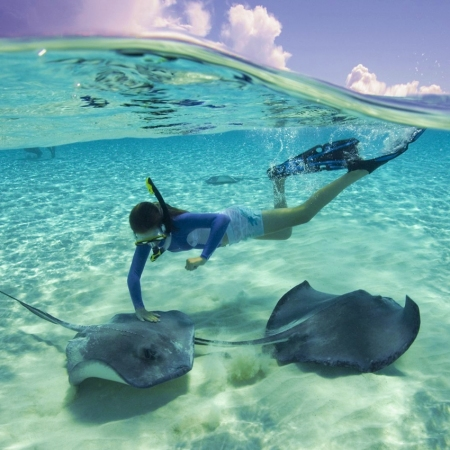 Take the day to explore Starfish Pont & swim among the Stingrays.