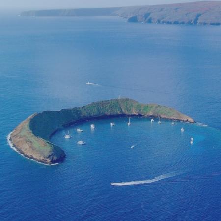 Snorkel at Molokini, Maui