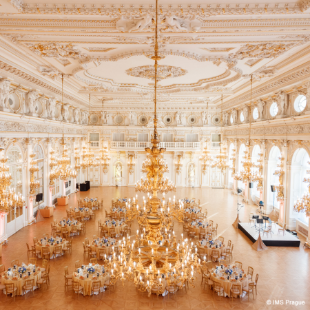 Huge gates open up for elegant dinners at royal palaces and intimate noble mansions with classical entertainment