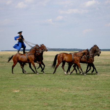 Country side Puszta experience with horse shows and nostalgic train transfer