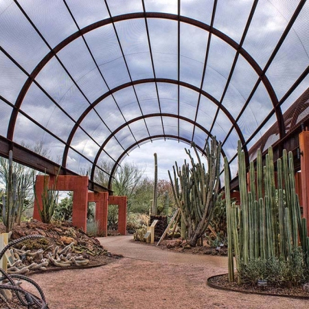 Desert Botanical Garden - explore the fascinating beauty of Sonoran Desert plant life
