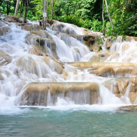 Climb the World's Famous Dunn's River Falls