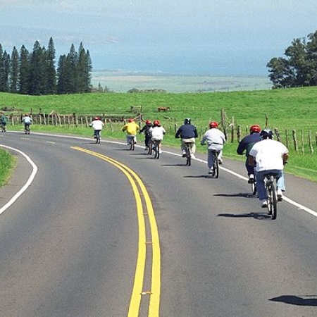In Maui – Bike down Haleakala Crater or go on a farm-to-table or distillery tour