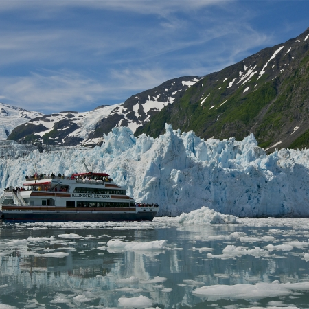 Glacier and wildlife cruises