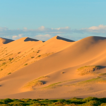 Gobi Desert: Known for its dunes, mountains and rare animals