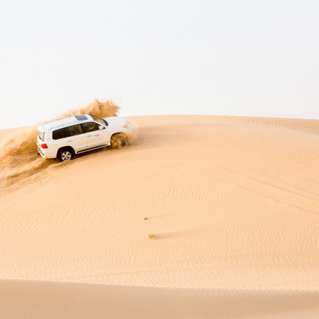 Experience culture and the natural beauty of the Arabian Desert.
