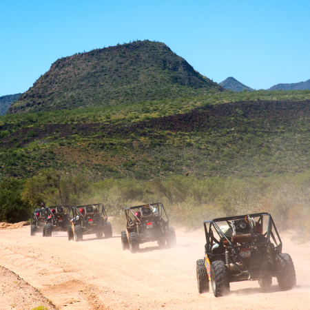 Sonoran Desert excursions + experiences