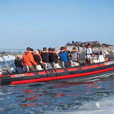 Take a power boat from Africa's tip at the Atlantic Ocean to the Indian Ocean